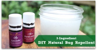 DIY bug repellent