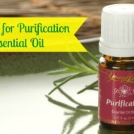 10 Uses for Purification Essential Oil