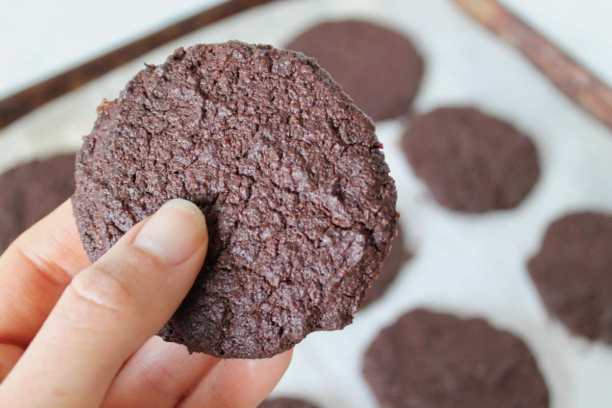 Close up shot of a hand holding one whole chocolate cookie with a cookie sheet with cookies on it in the background