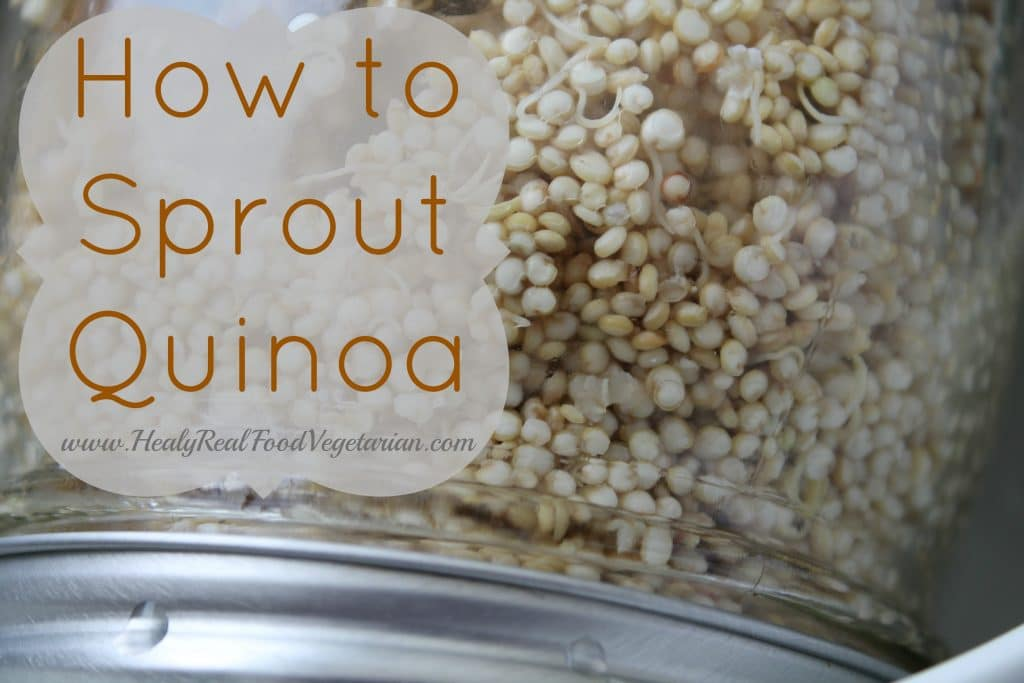 How To Sprout Quinoa Healy Eats Real