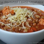Hearty Sprouted Lentil Vegetable Stew