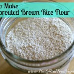 a close up shot of sprouted brown rice flour