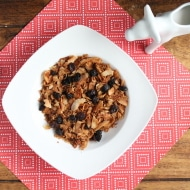 AIP Paleo Raisin Bran Recipe (Only 3 ingredients!)