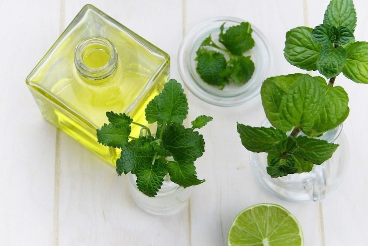 Glass bottle of essential oil next to green leaves
