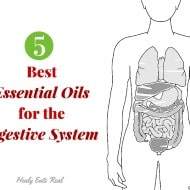 5 Best Essential Oils for Digestive Support