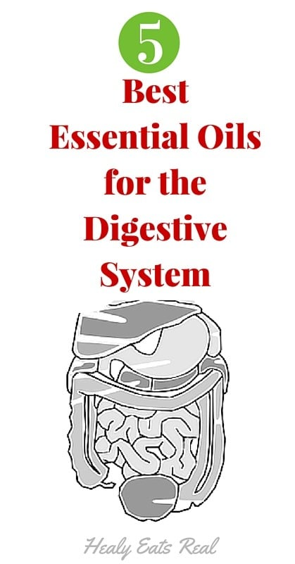 Best Essential Oils for the Digestive System (1)