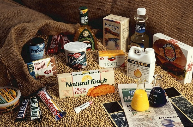 various soy products laid out amongst soy beans