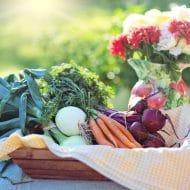 6 Best Foods for A Hypothyroidism Diet