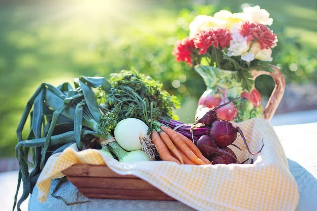Hypothyroidism Diet vegetables