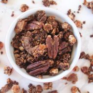 Cocoa Fig Homemade Granola Recipe (Sugar Free, Paleo, Vegan)
