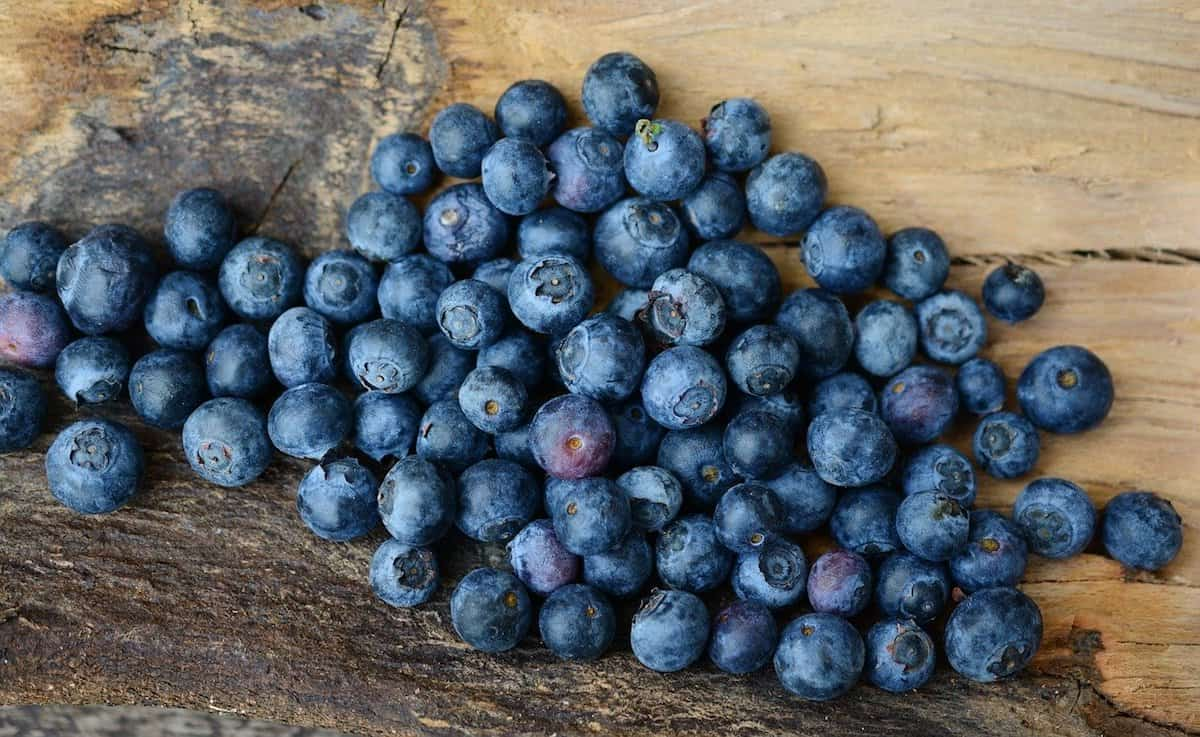 A bunch of blueberries on a wooden table