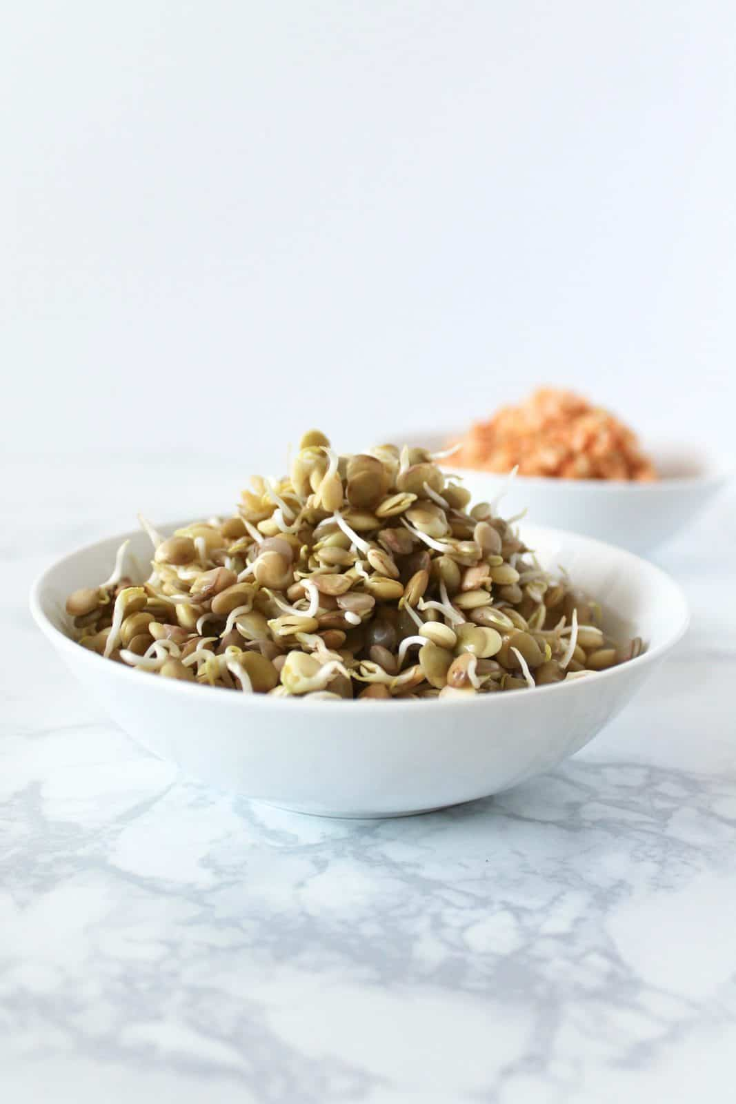 Two white bowl one with sprouted green lentils and one with sprouted red lentils on a white marble surface